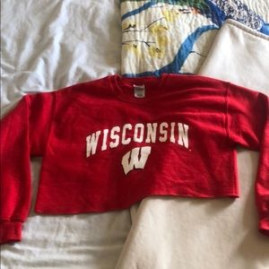 Cropped Wisconsin Sweatshirt